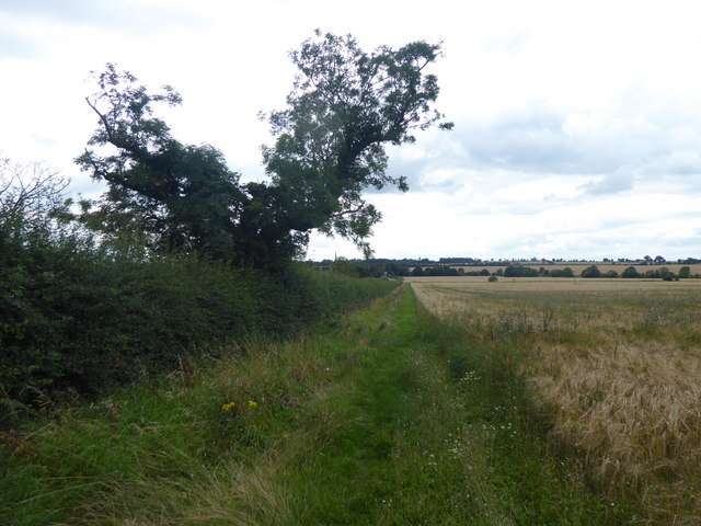 Alongside Caythorpe Heath Lane