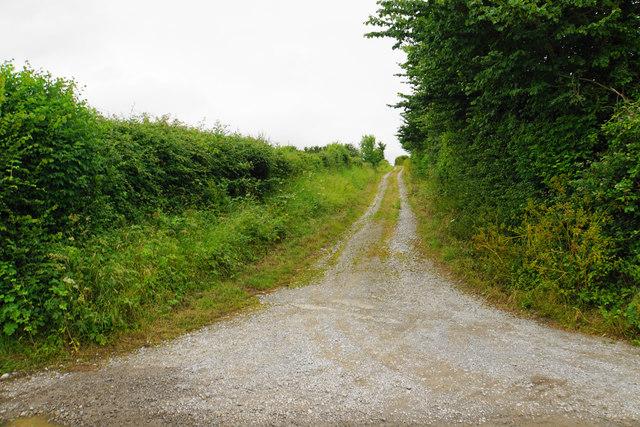 Farm track by Parkhouse Farm