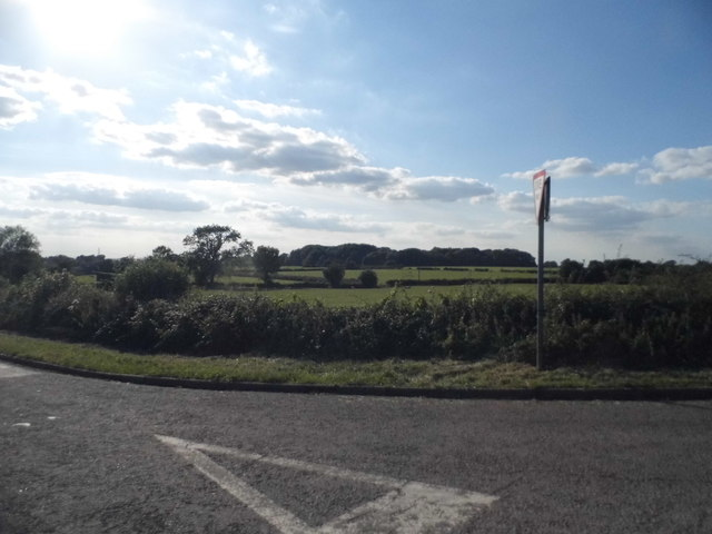 Field by Brill Road, Boarstall