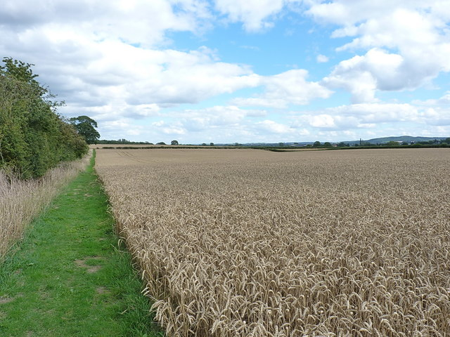 The Shropshire Way south of High Ercall