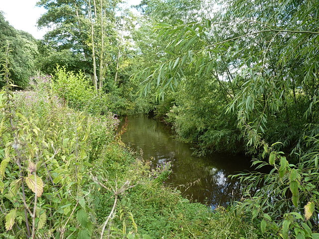 The River Roden