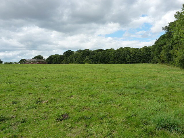 Field north of the Roden
