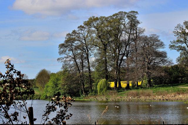 Upper Lake Cusworth Hall
