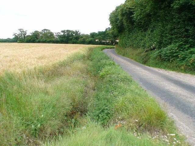 Lane to Brown Candover
