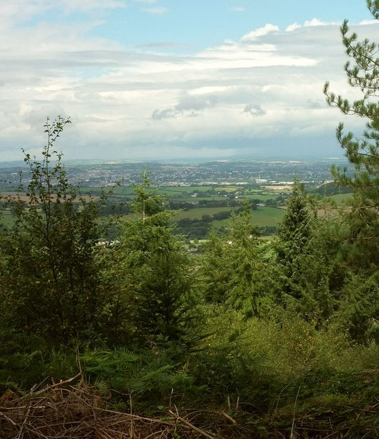 Viewpoint, Haldon