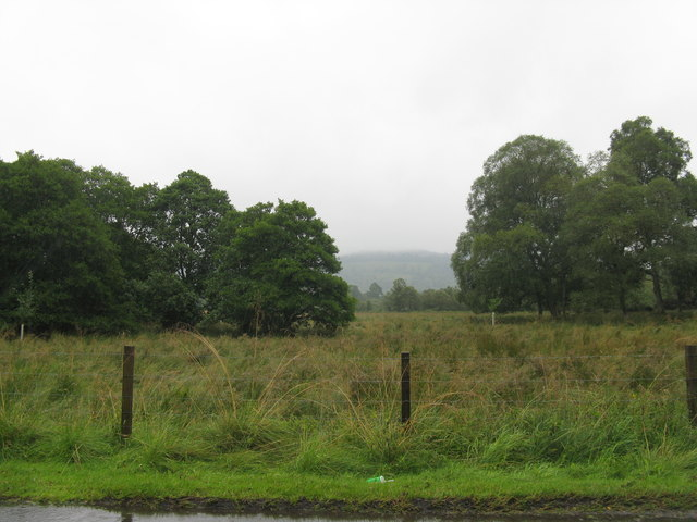 Meadows of Fungarth