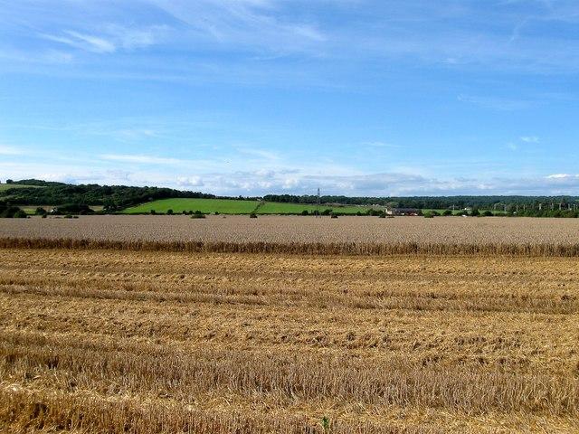 The Eight Acres/Barn Field/Lower West Field
