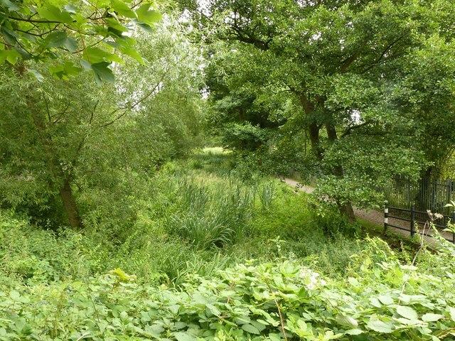 Derby Canal at Station Road, Borrowash