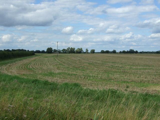 Stubble field off Cottenham Road