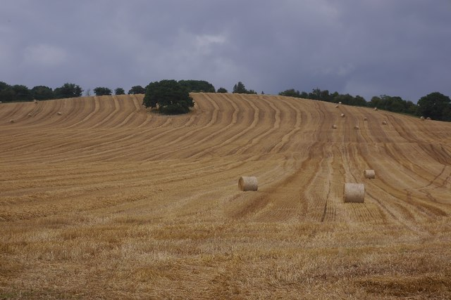 Round bales and stubble