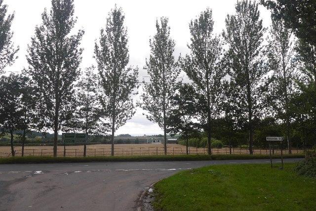 Poplars, A417