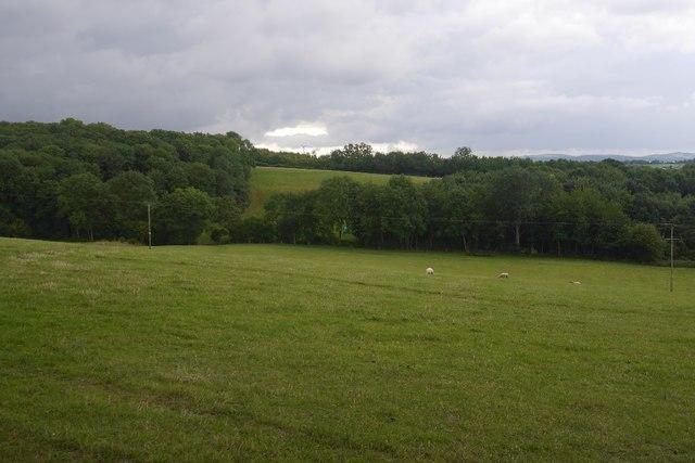 View towards Westfields Wood
