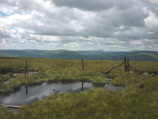 Bog pools and fence, Lovely Seat