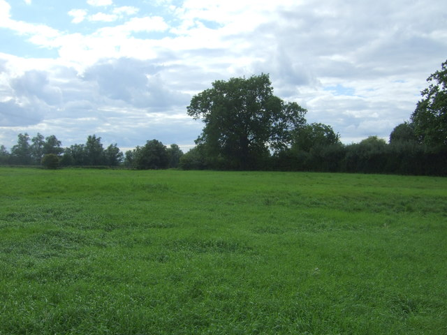 Grassland west of Clayhithe Road