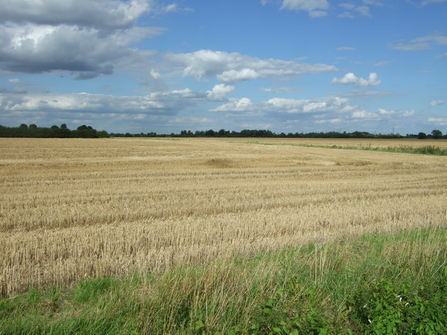 Stubble field near Eye Hall Farm