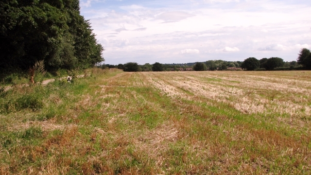 Crop field near Green Farm