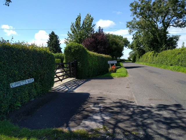 Lippetts Way, entering Catcott from the east