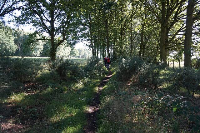 Heslington Common