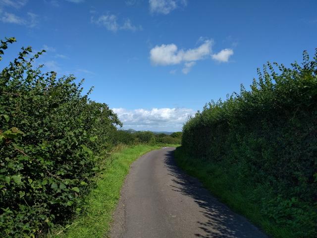 Lane heading towards Glastonbury - the Tor is just visible on the horizon