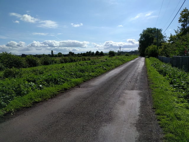 Lane looking south west