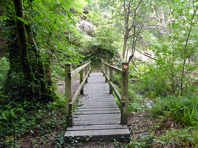 Footbridge by Bodmin Pill