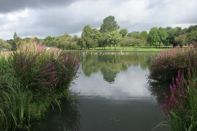 Pond, Knightswood Park