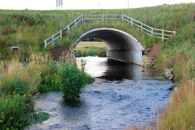 Lochter under Bypass