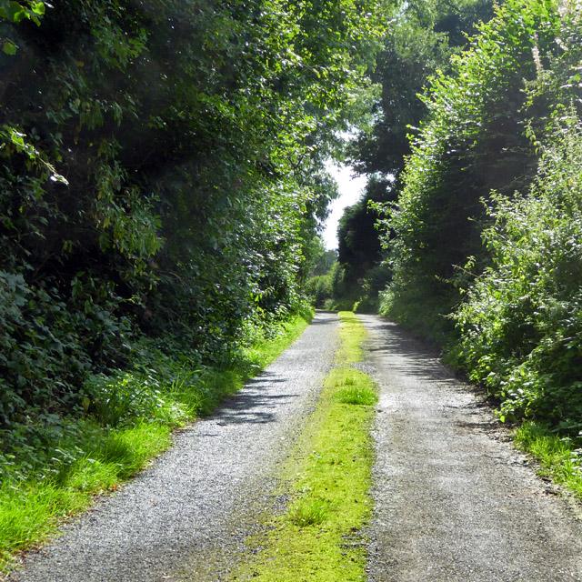 Gore Lane, Brandfold