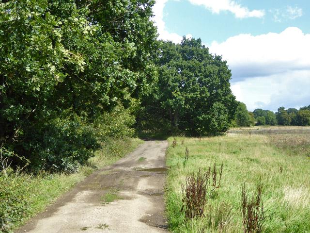 Farm track and public footpath