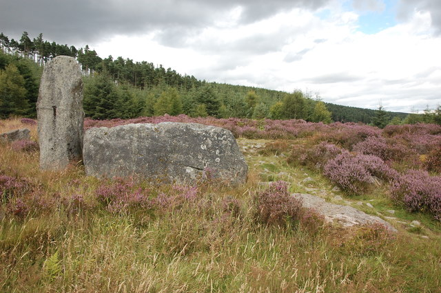 Whitehill or Tillyfourie stone circle: recumbent and flankers