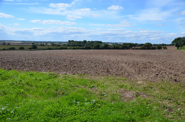 Fields near Kersall