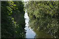 TQ0380 : Grand Union Canal (Slough Branch), near Iver by Stephen McKay