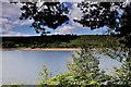 SE2000 : Langsett Reservoir by Tom Curtis