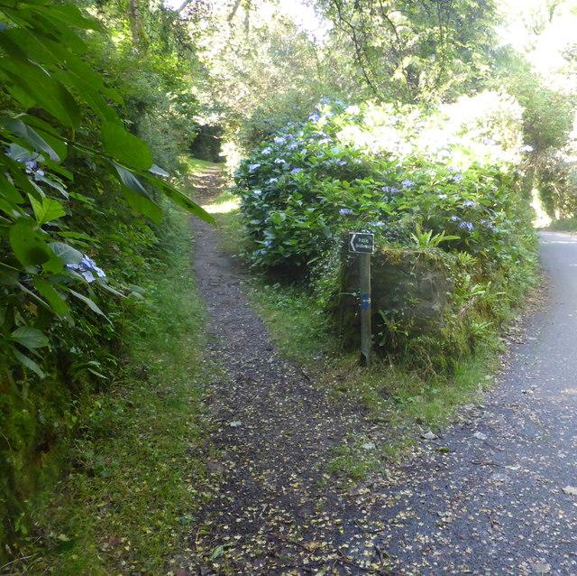 Bridle path near Lamorna