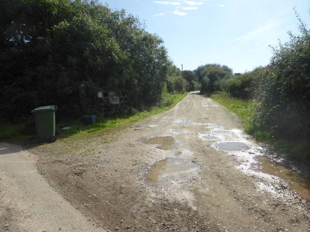 The lane to Boscawen Rose