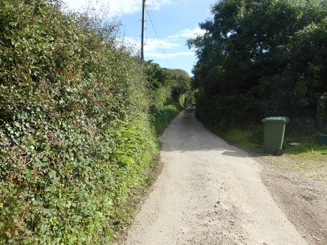 The road to Tregiffian Farm