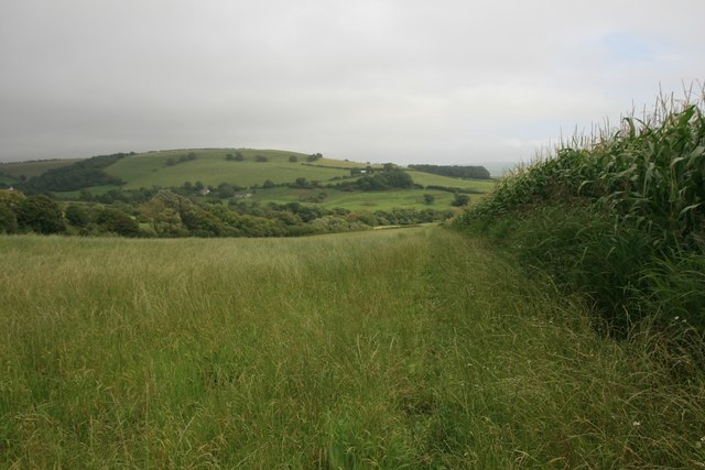 Bridleway east from Chilcombe