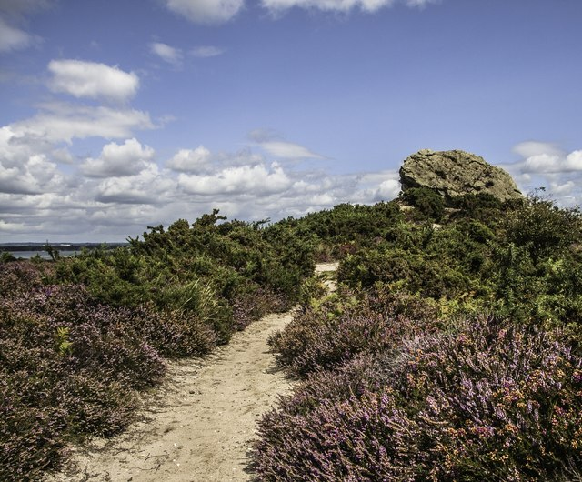 Aggleston Rock, Godlingston Heath