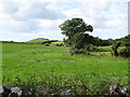 J6149 : Grazing land on the south side of Ballyfounder Road by Eric Jones