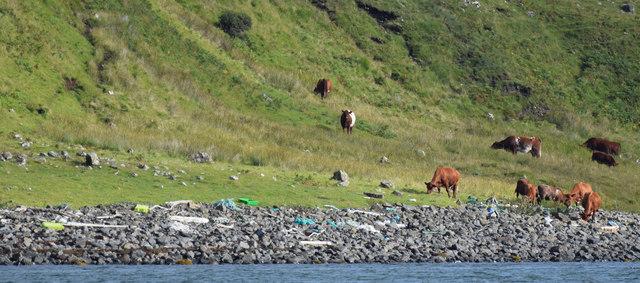 Loch Eynort, Skye