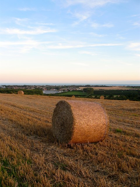 Hay Bale, East Hill