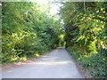 TQ4158 : Looking down Paynesfield Road from Ricketts Hill Road by Marathon