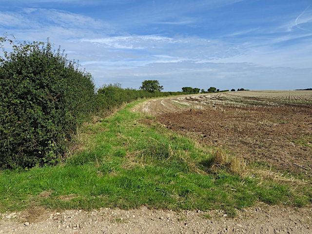 North of Longbrough Lane, Fitling