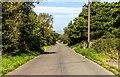SJ7465 : Brereton Lane by Peter McDermott