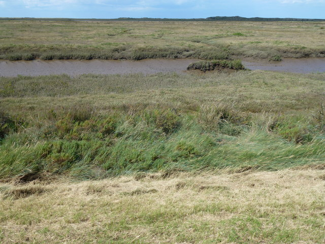Salt marsh near Scolt Head Island, Norfolk