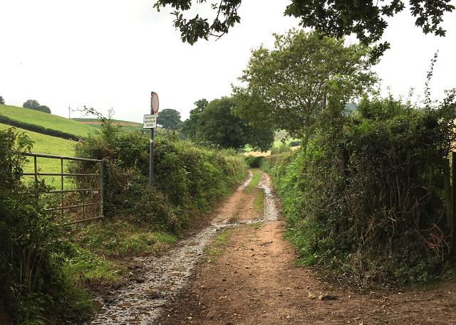 Hayeswood Lane