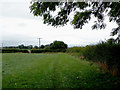 SJ6353 : Field and footpath near Acton in Cheshire by Roger  Kidd