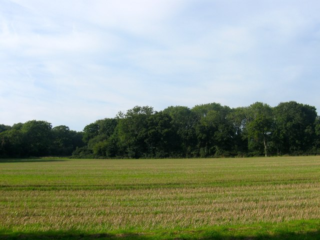 Green Lane Field