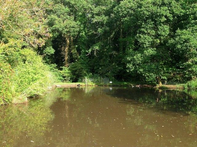 Poachers Pond
