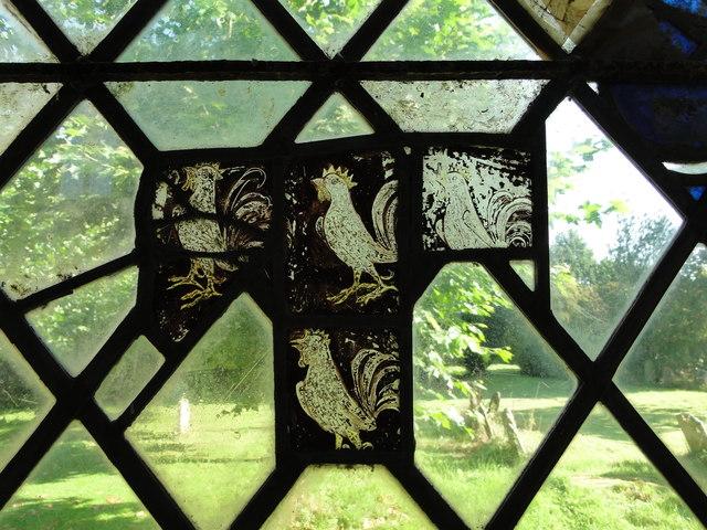 Four cocks in mediaeval glass at Thrandeston